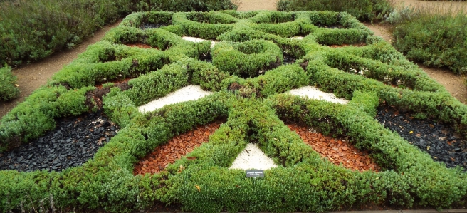The Knot Garden featured several varieties and styles of these intricate gardens.
